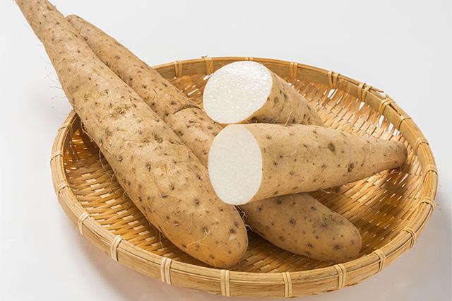 収穫直後の自然薯