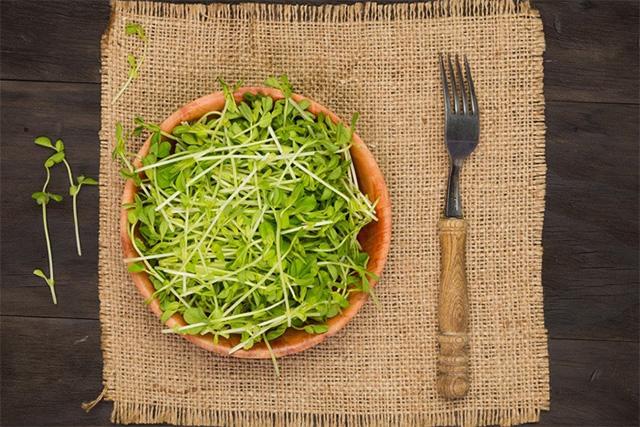 サラダで食べる豆苗