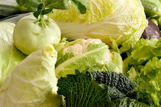 キャベツやレタスなどの淡色野菜