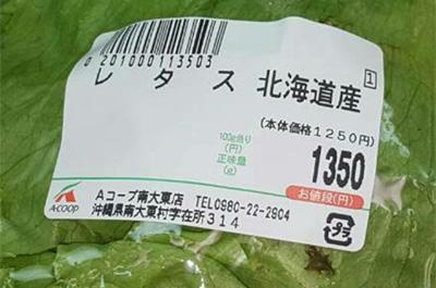1000円台のレタス