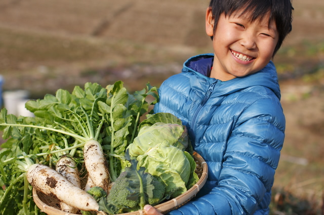 国産の野菜を持つ子供