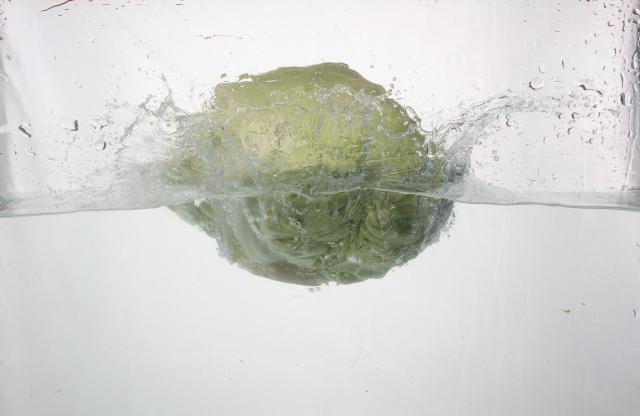 水に落ちたキャベツ