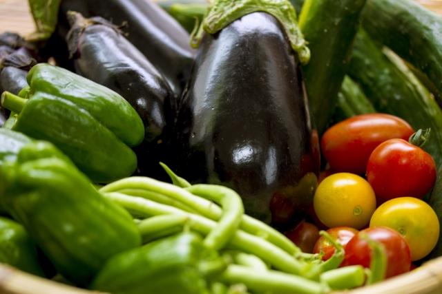 なすと多種の野菜